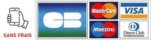 Logo cartes bancaires 3