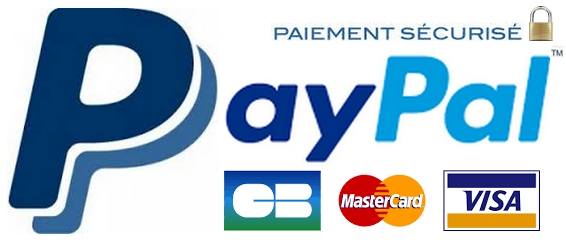 Paypal 2017 3